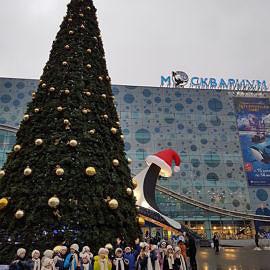 20171227 095330 270x270 Новогодняя елка в Москве