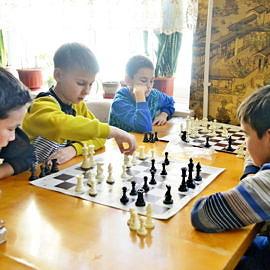 DSC0055 270x270 Шахматно шашечный кружок Белая ладья