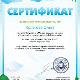 Sertifikat ob uchastii ekologia rossii.ru 18266 270x270 Достижения обучающихся