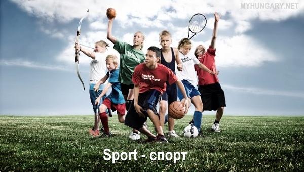 Неделя спорта