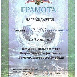 gramota kozhanyj myach 200222 270x270 Достижения обучающихся
