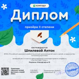 SHpilevoj Anton diplom 270x270 Достижения обучающихся