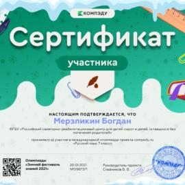 Merzlikin Bogdan sertifikat 270x270 Достижения обучающихся