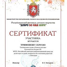 diplom 00011 270x270 Достижения обучающихся
