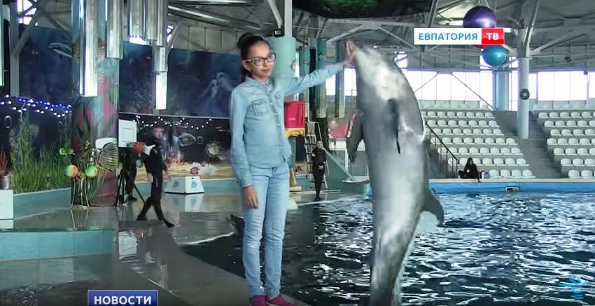 Новая новогодняя программа в дельфинарии