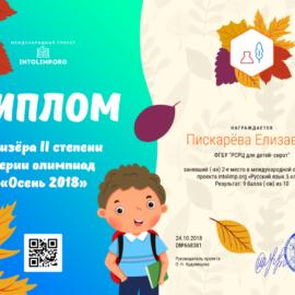 Piskaryova Elizaveta diplom 270x270 Достижения обучающихся
