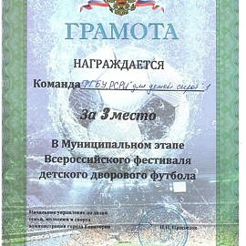 gramota kozhanyj myach 300223 270x270 Достижения обучающихся