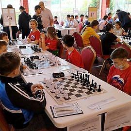 IMG 2523 270x270 Шахматно шашечный кружок Белая ладья