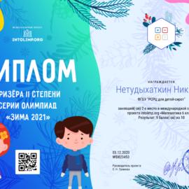 Netudyhatkin Nikolaj diplom 270x270 Достижения обучающихся