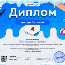 Holyushkina Sofya diplom 270x270 Достижения обучающихся